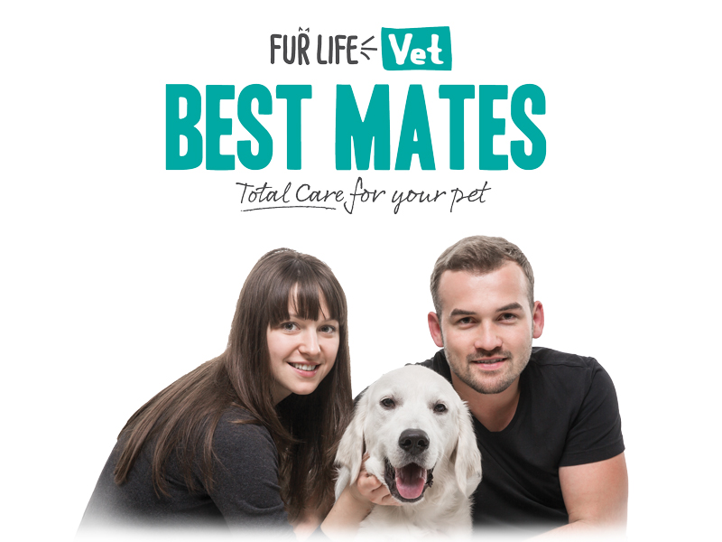 Best Mates – Membership has its benefits